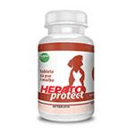 04-hepato-protect
